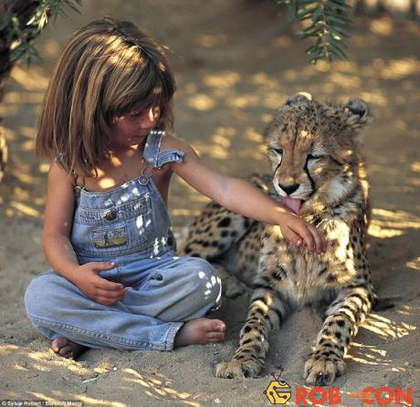 Với một con báo nhỏ ở Namibia